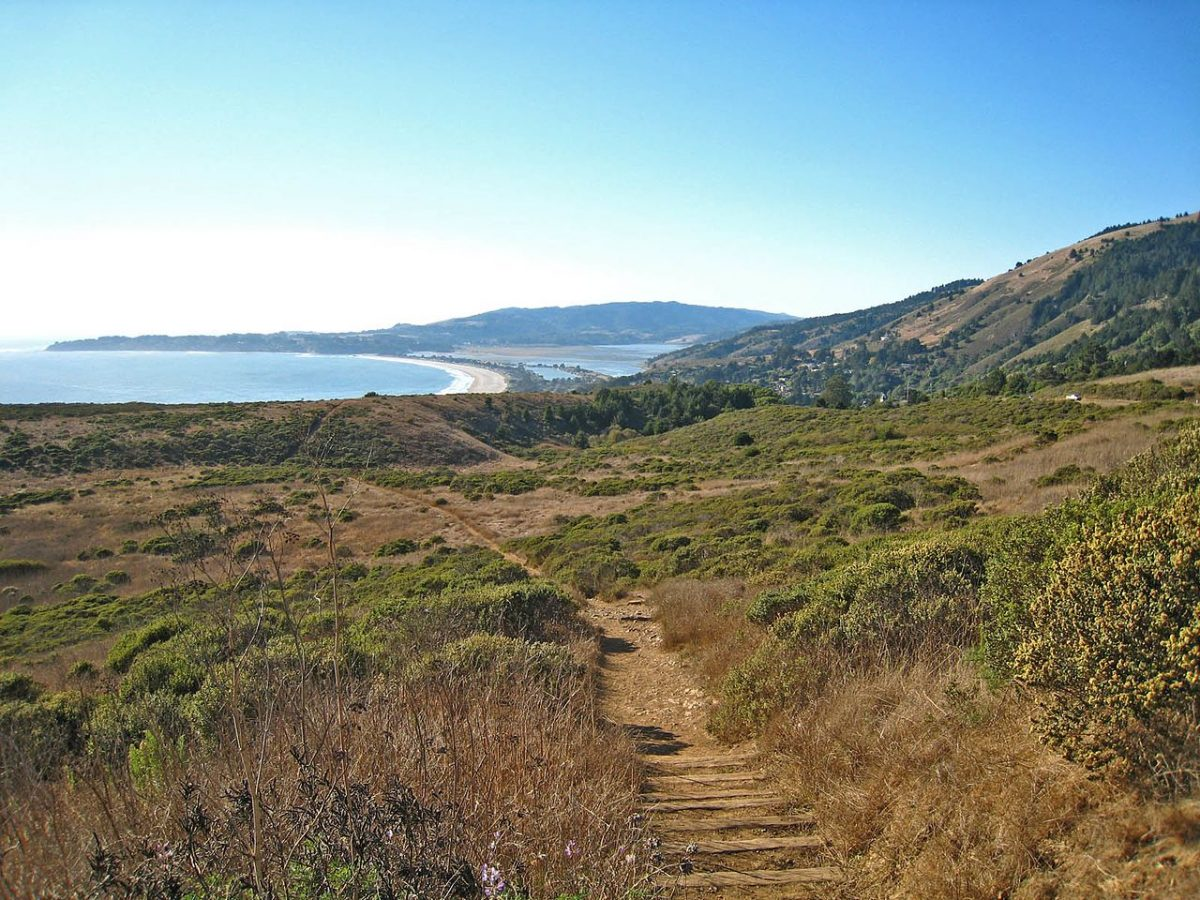 Road Trips: Bay Area Hikes with a bar at the end