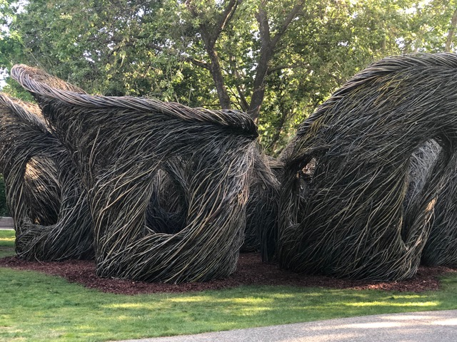 """Sure Enough"" – new art installation in Civic Park!"