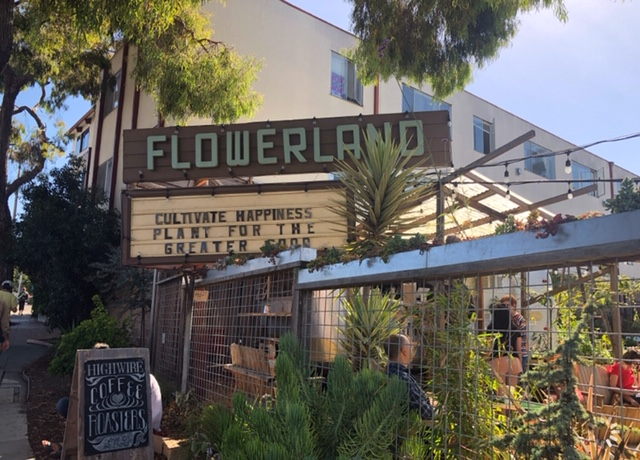 Get lost in Flowerland