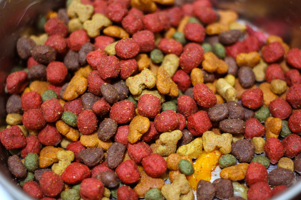 Did you know you can get raw, affordable dog food delivered to Walnut Creek?