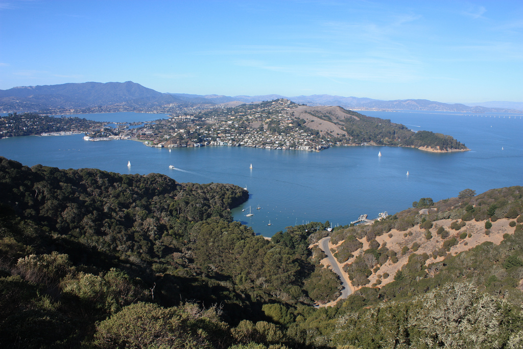 Best Hikes in the Bay! (UPDATED)