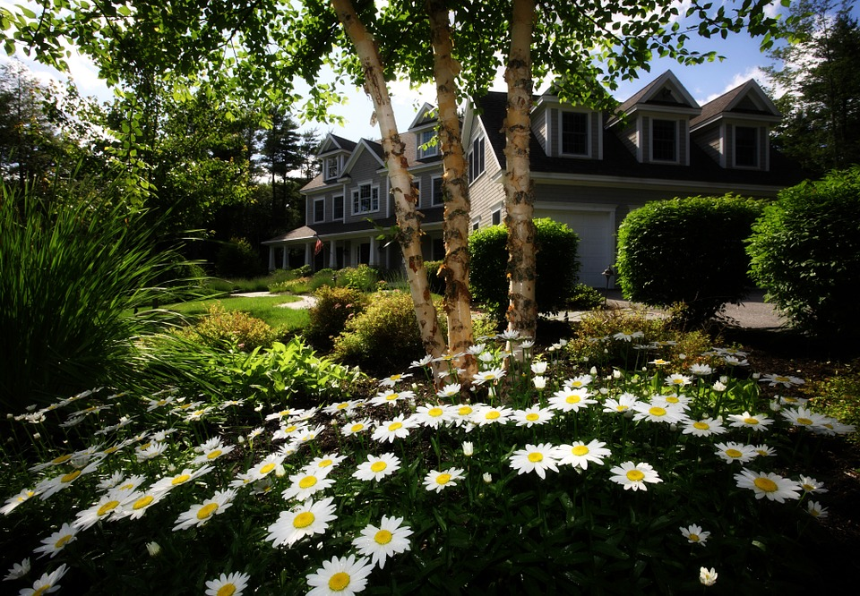 Landscaping tips to improve home value