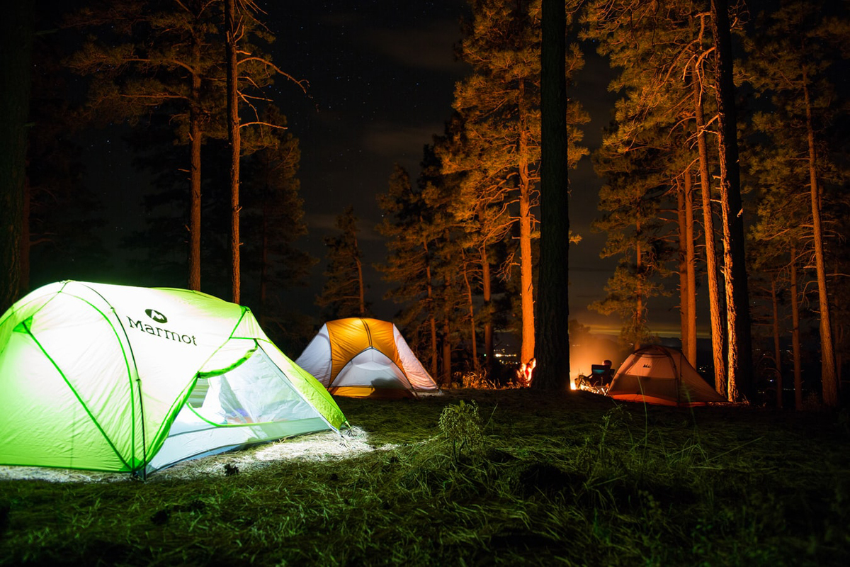 Where To Go Camping Near The Bay Area